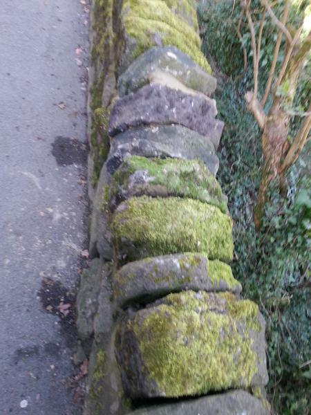 Coping Stones repaired